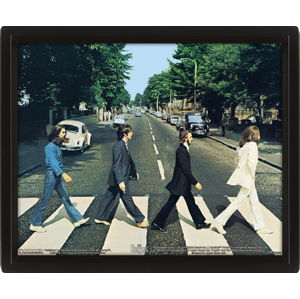 obraz 3D Beatles - EPPL71252